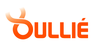 Logo Olivier Oullié - Conférencier international